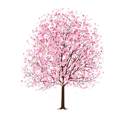 Vector-pink-cherry-blossom-tree-02-by-dragonart_large